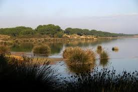 Humedales%20Andaluces2 - Andalusian Wetlands