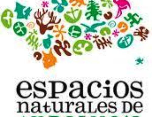 Andalucia y sus Parques Naturales en una Furgoneta Camper.