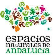 andalucia and its nature parks on a campervan - Andalucia y sus Parques Naturales en una Furgoneta Camper.