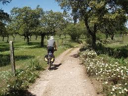 en bici de montana por andalucia 3 - En bici de montaña por Andalucía.
