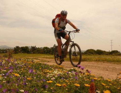 En bici de montaña por Andalucía.