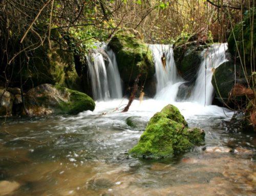 Con niños de aventura por Andalucía en Furgoneta Camper (2ª Parte)