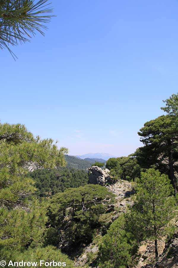 cazorla natural - Natural Andalucia – a glamping adventure in a spectacular protected environment