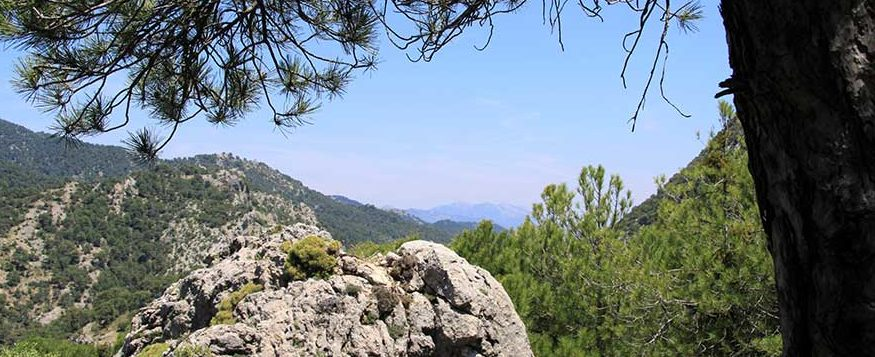 cazorla natural2 e1492424204122 - Natural Andalucia – a glamping adventure in a spectacular protected environment