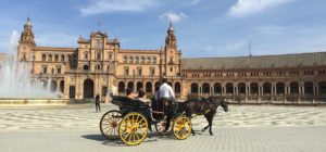 Capital Culture, a Flamenco Campers trip to evocative Seville