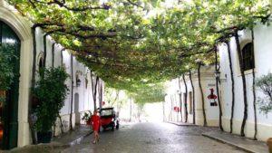 Dr. Camp's Andalucía Tour – PART 2