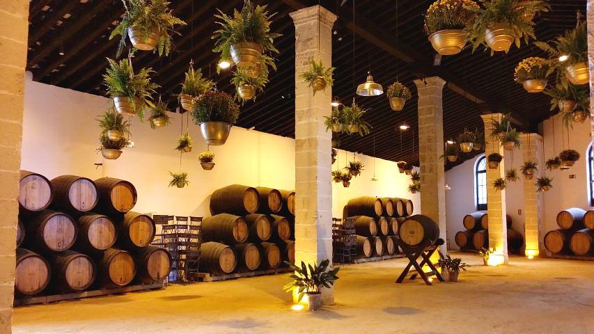 andalusia34 - Dr. Camp's Tour por Andalucía – PARTE 2