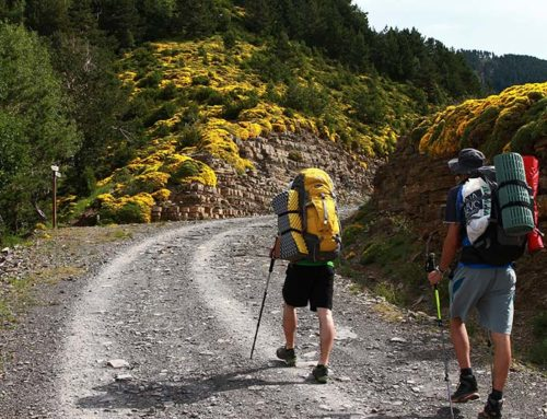Hiking & Trekking with Flamenco Campers