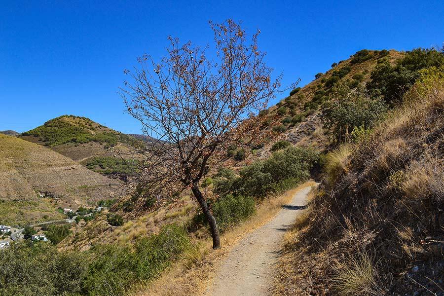 sierra nevada hiking - Senderismo y Trekking con Camper