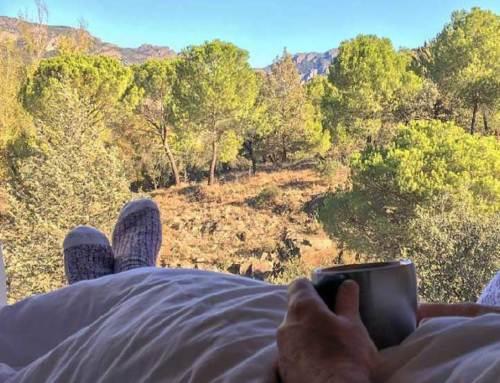 Campervan y autocaravana, la forma más segura de viajar por España